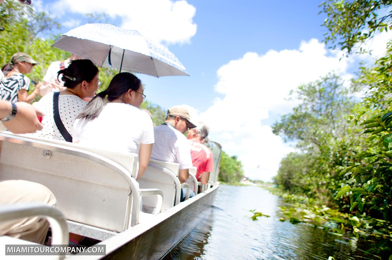Everglades Airboat Ride Wildlife Show