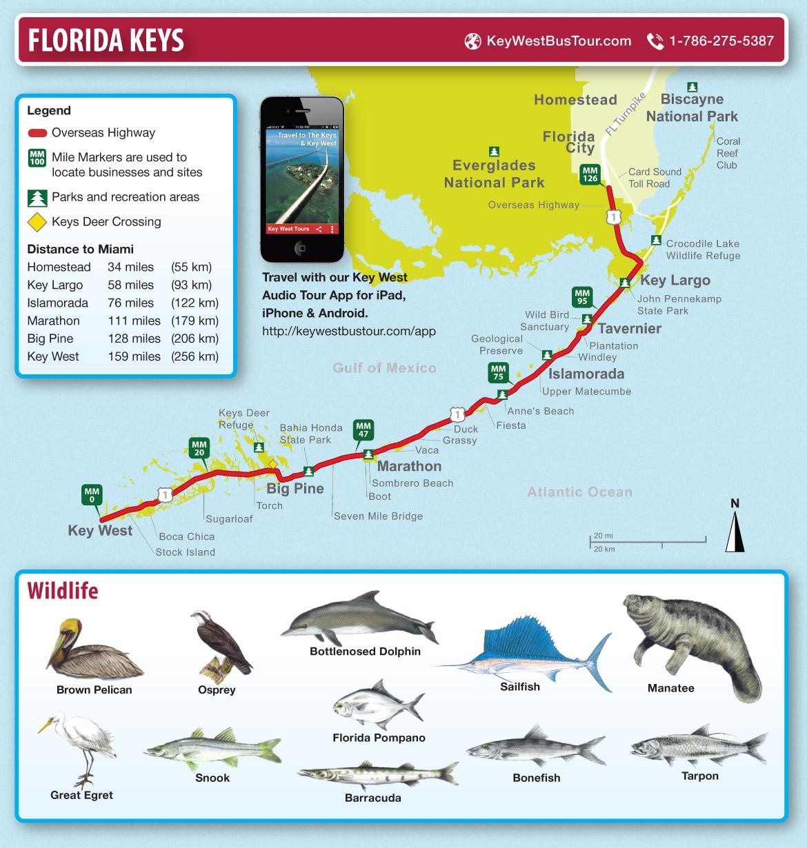 Mapa de Key West y Florida Keys  Viaje a Miami